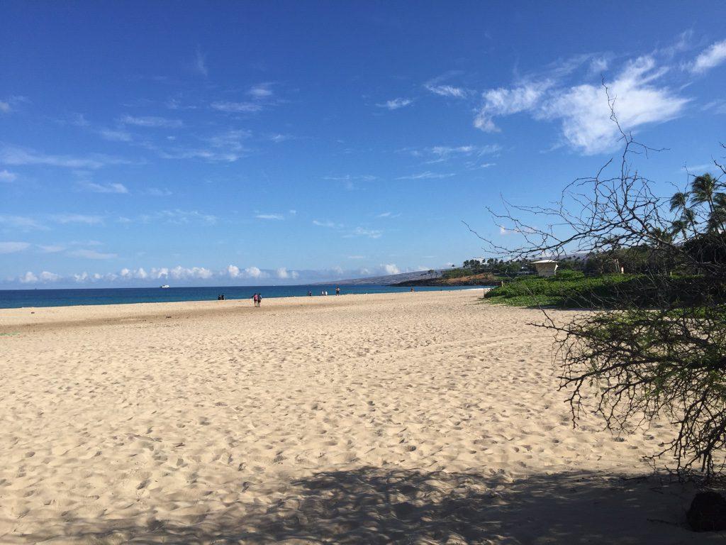 Hapuna Beach Big Island Hawaii Horizon Guest House