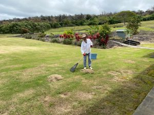 Mowing cleanup Horizon Guest House Hawaii