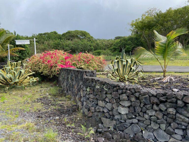 HGH Rock Wall Hawaii 4
